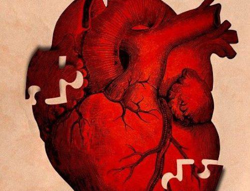 Ciertas células derivadas de la placenta pueden regenerar el corazón