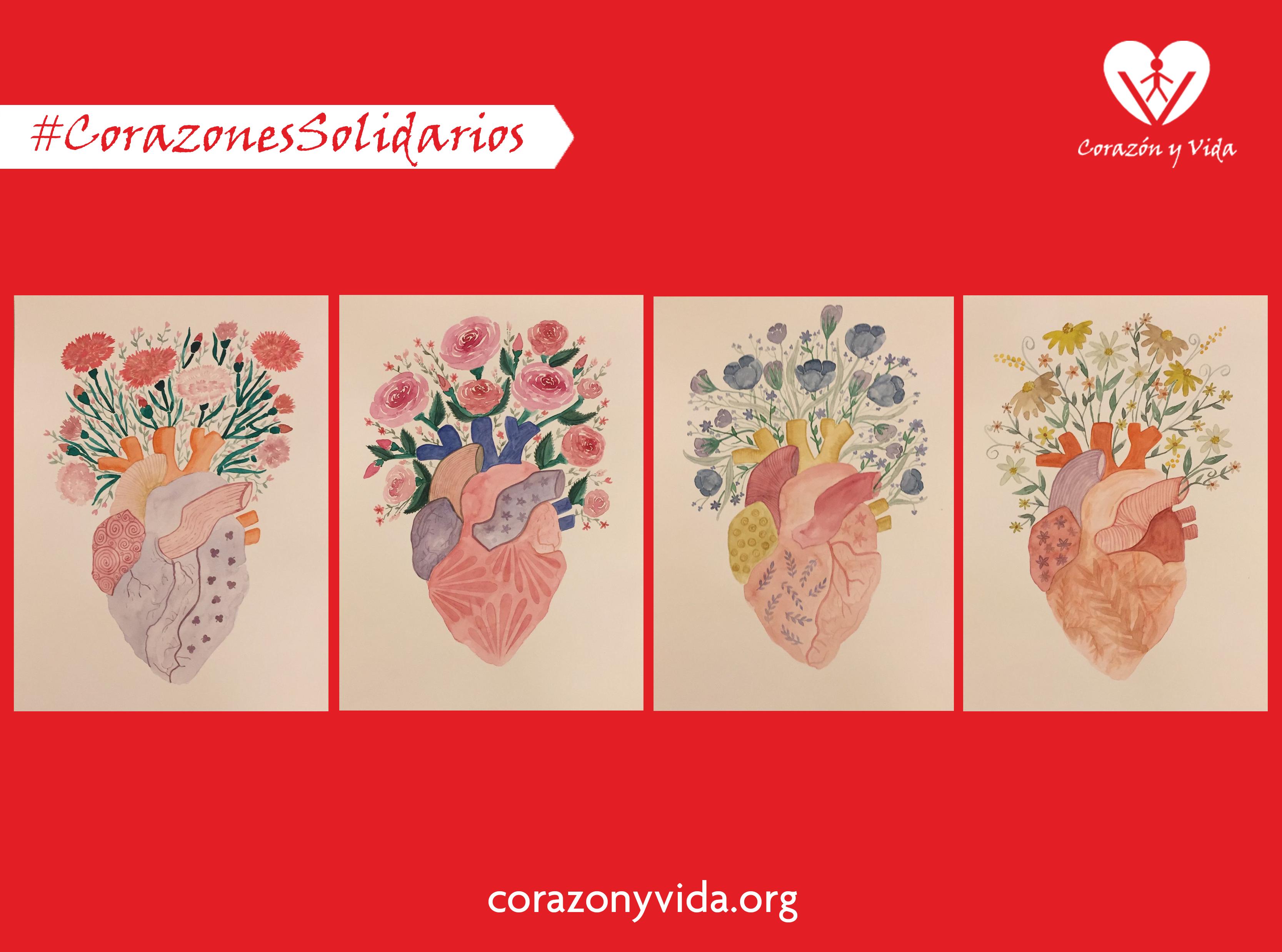 iniciativa solidaria asociación corazon y vida