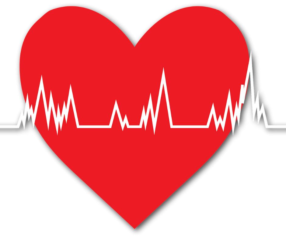 las cardiopatías congénitas se desarrollan durante el periodo embrionario