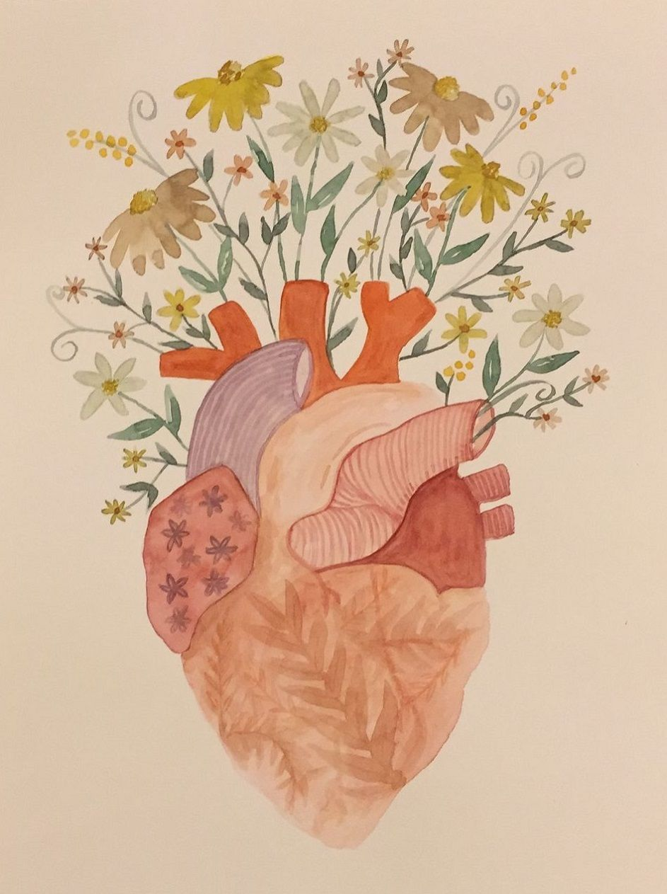 corazones solidarios asociación corazon y vida